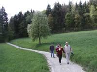 Wanderung durch das Fünfmühlental