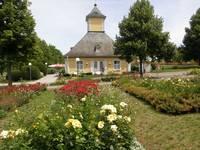 Salinenpark - Rosengarten