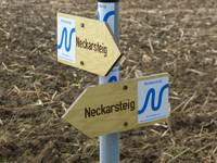 Wanderweg Neckarsteig
